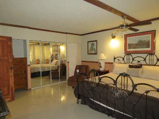 #3 Cool Luxurious 3-Bedroom Apt. - Kingston vacation rentals