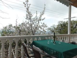 Sunny Condo with Internet Access and A/C - Dubrovnik vacation rentals
