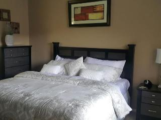 Fully Furnished Corporate Condo - South Houston vacation rentals