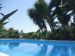 Nice Villa with A/C and Shared Outdoor Pool - Sant'Agata sui Due Golfi vacation rentals