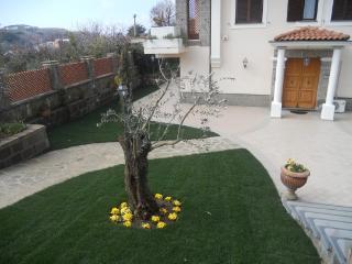 Nice 5 bedroom Villa in Sant'Agata sui Due Golfi with A/C - Sant'Agata sui Due Golfi vacation rentals
