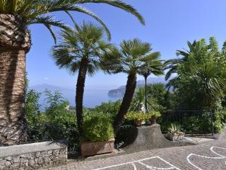 V443 A - Sorrento - Sorrento vacation rentals