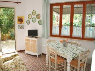 CONCHIGLIA SUD - Marina Di Campo vacation rentals