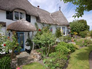 Charming House with Internet Access and DVD Player - Bovey Tracey vacation rentals