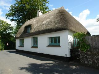 Comfortable 3 bedroom House in Newton Abbot with Internet Access - Newton Abbot vacation rentals