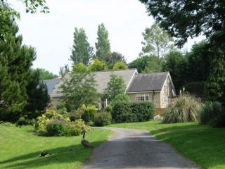 Blackberry Lodge, Ashburton, Devon - Ashburton vacation rentals