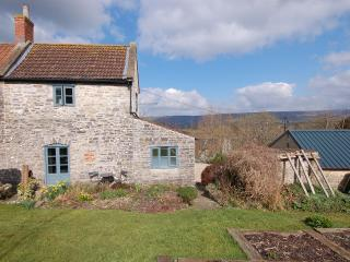 Lovely 1 bedroom House in Wookey with Internet Access - Wookey vacation rentals