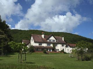 15 bedroom House with Internet Access in Porlock Weir - Porlock Weir vacation rentals