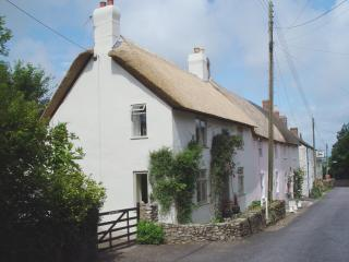 Nice House with Internet Access and DVD Player - Axminster vacation rentals