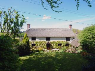 Hope Cottage, Riddlecombe, Devon - Riddlecombe vacation rentals