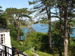 Gorgeous 2 bedroom House in Salcombe with Internet Access - Salcombe vacation rentals