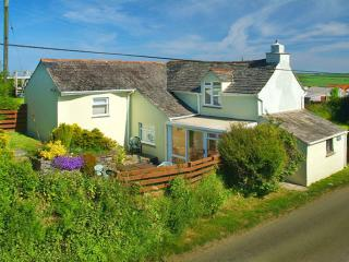 Spacious House with DVD Player and Microwave - Delabole vacation rentals
