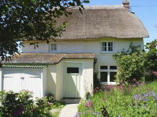 Nice House with Internet Access and DVD Player - Morwenstow vacation rentals