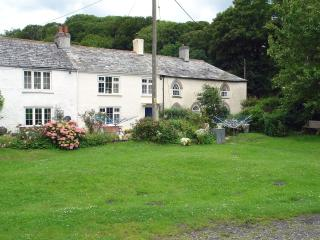 Lovely House with Internet Access and DVD Player - Boscastle vacation rentals
