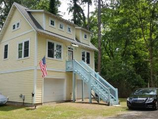 2 Bedroom 35ft Ceilings With Loft & Pet Friendly - Wilmington vacation rentals