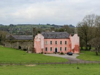Perfect 6 bedroom Castle in Lismore - Lismore vacation rentals