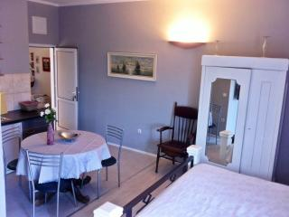 Charming apartment-studio in basement with garden - Kastel Kambelovac vacation rentals