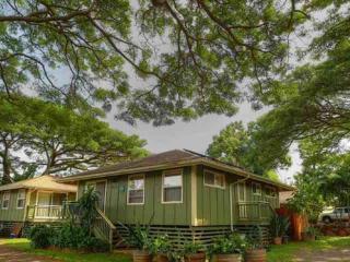 Napili Plantation Style Home - Napili-Honokowai vacation rentals
