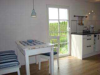 1 bedroom Apartment with Internet Access in Gruenendeich - Gruenendeich vacation rentals