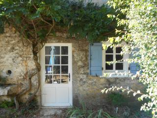 Perfect 1 bedroom Gite in Genouille - Genouille vacation rentals