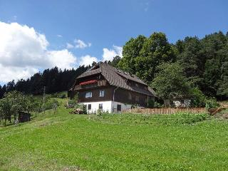 Vacation Apartment in Schramberg - 1399 sqft, bright, modern, comfortable (# 9436) - Tennenbronn vacation rentals