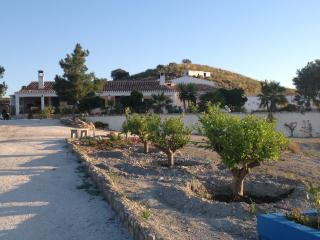 Cortijo Las Nubes  rental house : relax and enjoy - Lorca vacation rentals