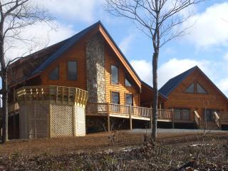 North Carolina Mountain Log Cabin in Blue Ridge - Dobson vacation rentals