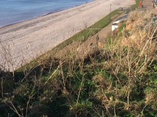 3 BEDROOMS (not 2) Spacious / pet friendly / Comfortable but lived in! - Budleigh Salterton vacation rentals
