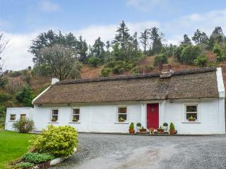 THE THATCH, all ground floor, thatched, open fires, parking, garden, in Tipperary, Ref 932616 - Tipperary vacation rentals
