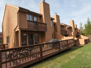 Deerfield Village 120 - Canaan Valley vacation rentals