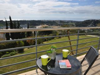Encosta da Orada T1 HB espantosa vista mar - Albufeira vacation rentals