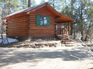 La Plata Mountains Bunkhouse - Cozy and Economical - Mancos vacation rentals