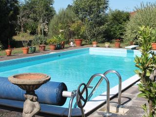 Gite with Pool DISCOUNTED FOR JUNE & JULY - Sousceyrac vacation rentals
