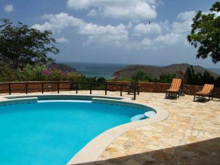 Luxury 4 Bedroom Home w/Ocean Views and Large Pool - Playa Maderas vacation rentals