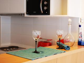 SELF-CATERING APARTMENT FOR RENT - Santiago vacation rentals