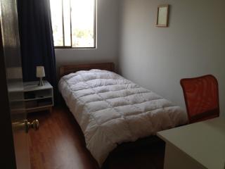 Nice Condo with Internet Access and Elevator Access - Santiago vacation rentals