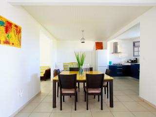 Beautiful Villa close to the beaches - Ducos vacation rentals