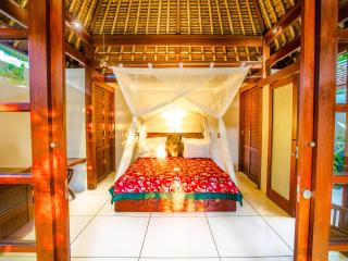 LUXURY Villa Jiwa in Ubud ONLY $79! - Ubud vacation rentals