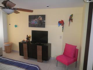 Villa Magna 252 - Nuevo Vallarta vacation rentals