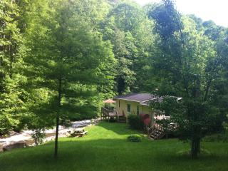 Nice 3 bedroom Burnsville Cabin with Deck - Burnsville vacation rentals