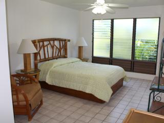 Palm Hale - Majesty Palm - Kailua-Kona vacation rentals