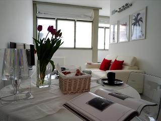 BEAUTIFUL FLAT MILAN CENTER  P.ZZA REPUBBLICA - Milan vacation rentals