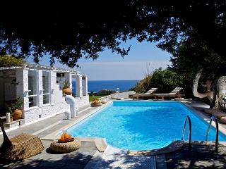 Agia Thalassa Villa-Luxury Villa with Private Pool - Ampelas vacation rentals