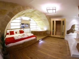Loft w/ Jacuzzi, Sauna, Hammam & Cinema - Bordeaux vacation rentals