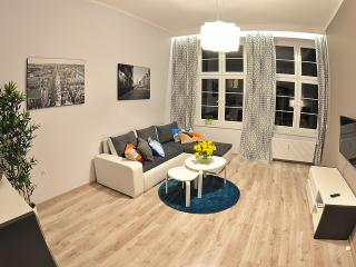 Bright 1 bedroom Condo in Gdansk - Gdansk vacation rentals