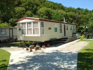 Comfortable Caravan/mobile home with Internet Access and Hot Tub - Cenarth vacation rentals