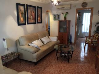 2 Bed Ground floor South facing Apartment - Los Montesinos vacation rentals