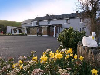 Comfortable 8 bedroom Bed and Breakfast in Carrickmacross - Carrickmacross vacation rentals