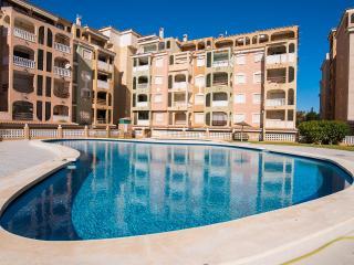 Jardin Botanico+pool+park+WiFi+TV - Torrevieja vacation rentals