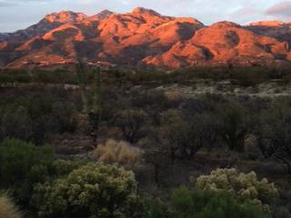 View is like no other with Wall of Windows Facing Mountains and City ! - Tucson vacation rentals